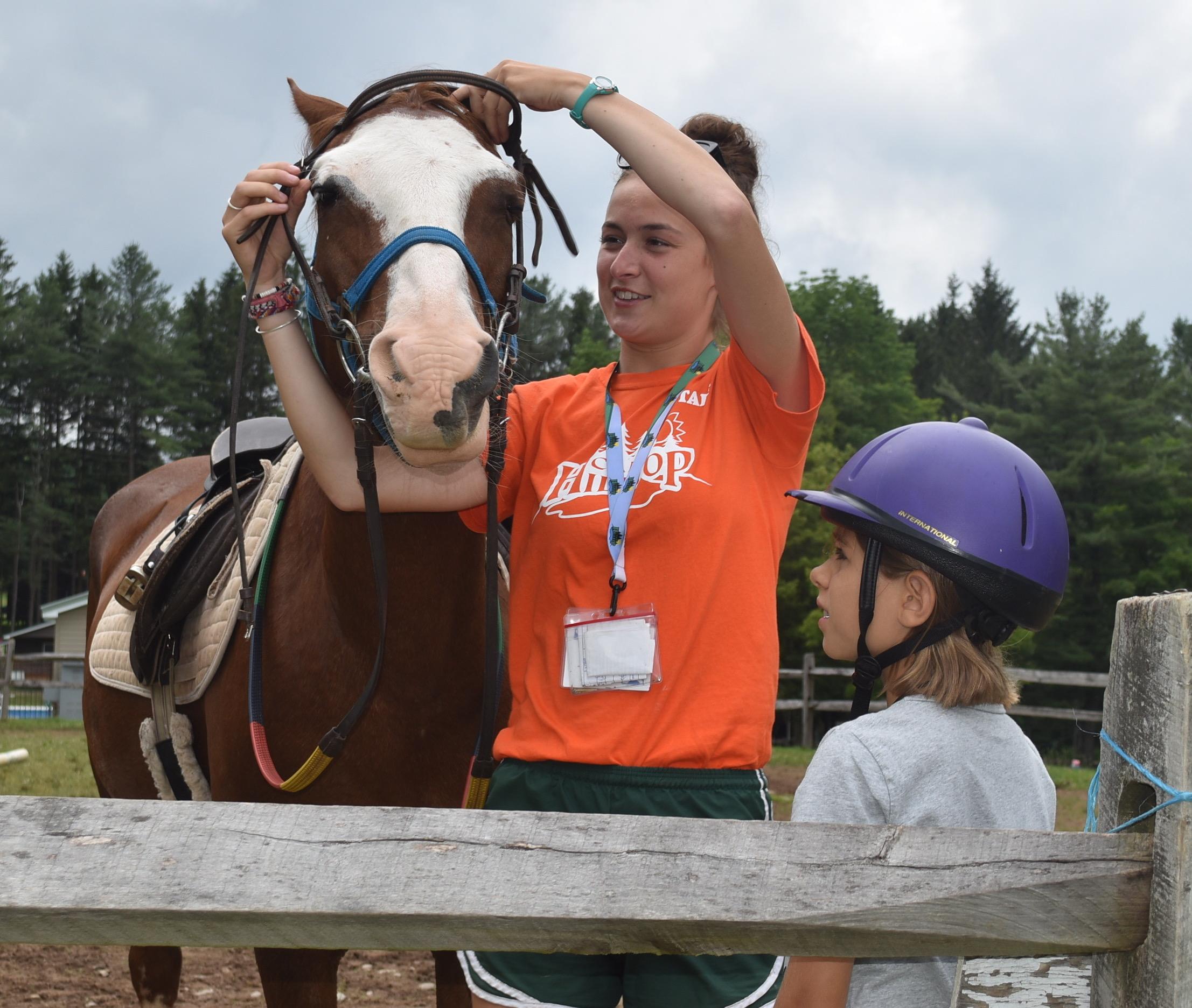 Camp Hilltop - Horses
