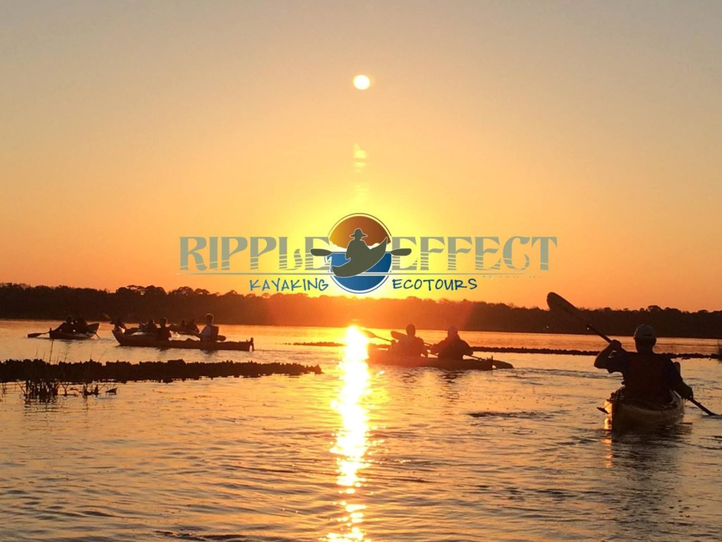 Ripple Effect Ecotours