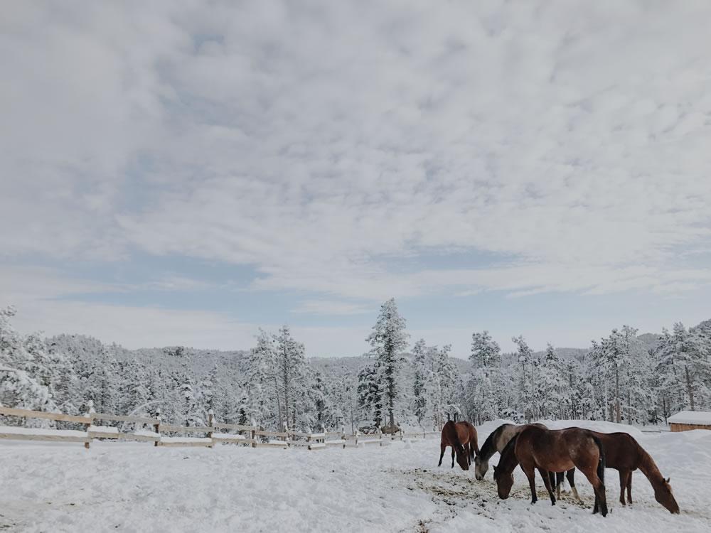 Sundance Trail Guest Ranch