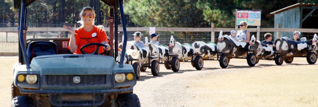 Washington Farms GA - Cow Train